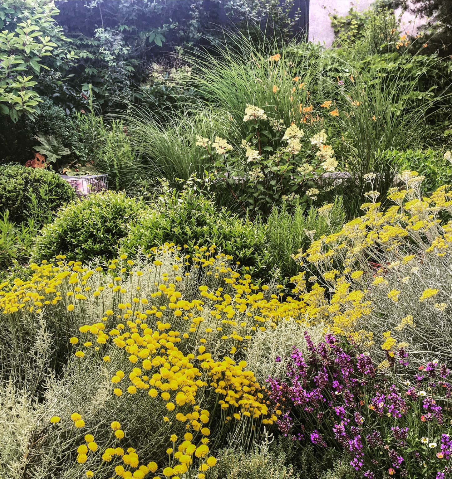 Collonges-monts-or-2_jardin_IDESIA__05